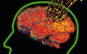 truth about medical marijuana brain cells